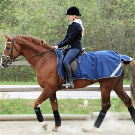 freedom_riding_rug_navy_1a_900
