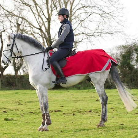 freedom_riding_rug_red_1_900
